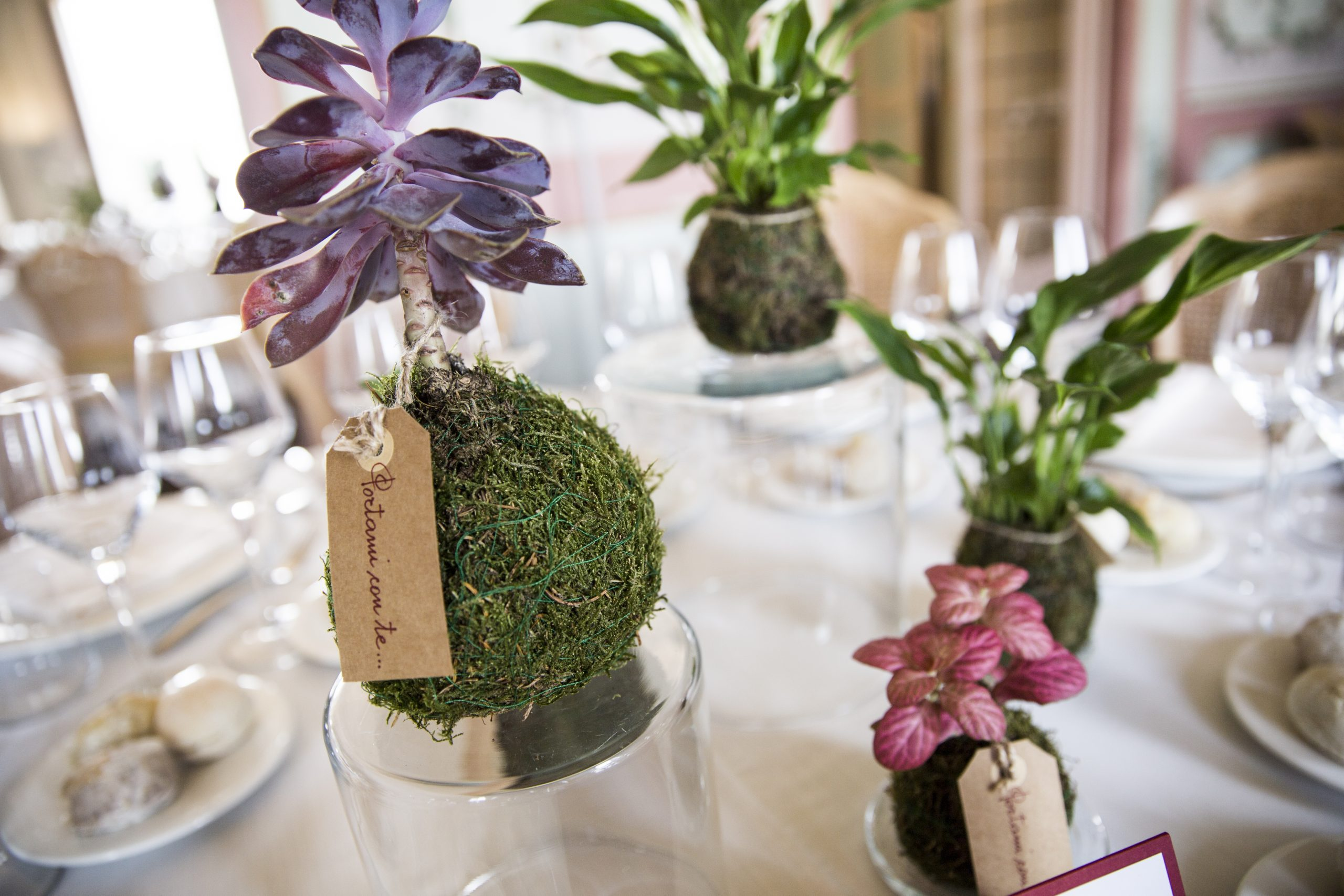 Matrimonio in Marsala e Verde-9 Antonella Amato Wedding Planner