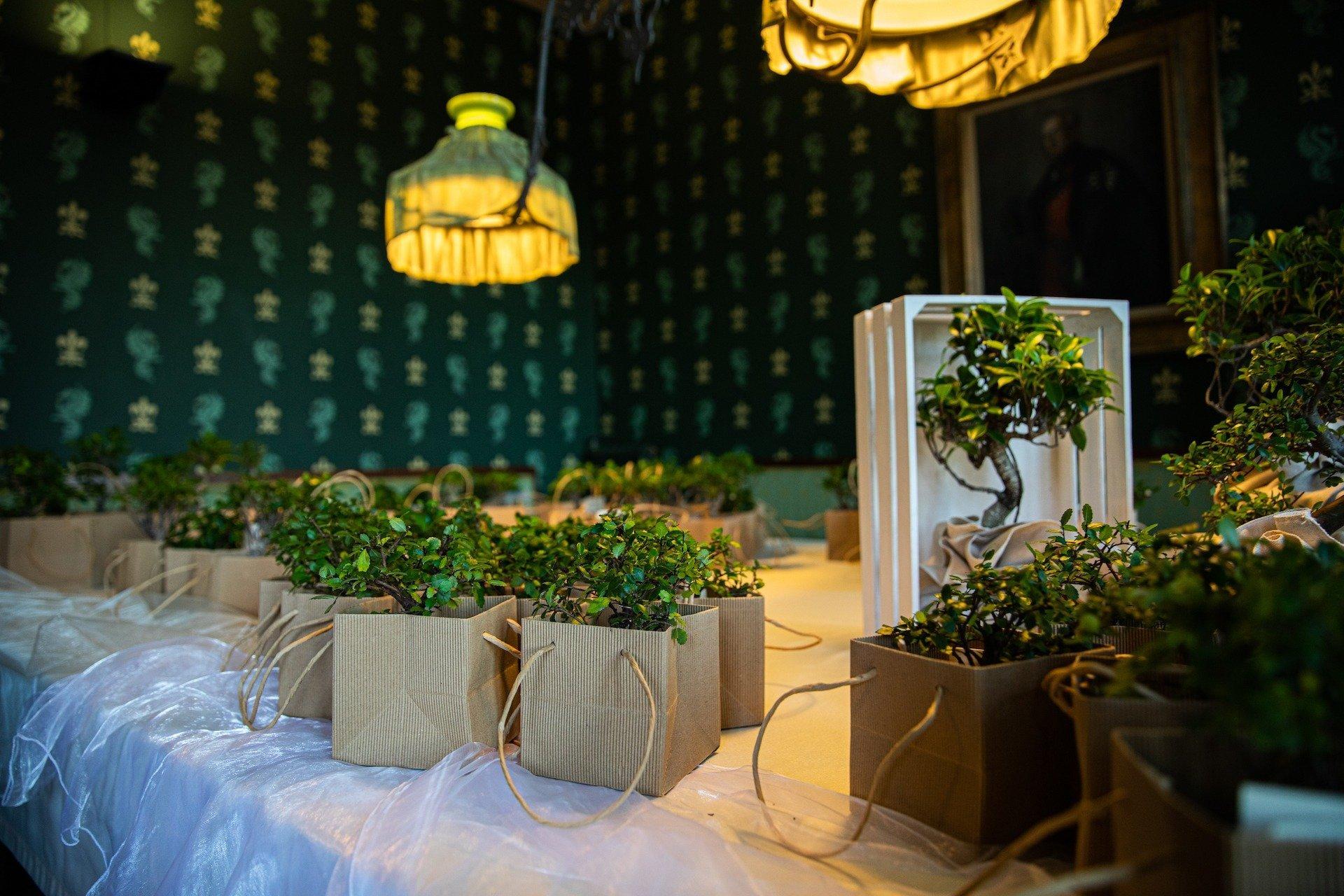 Matrimonio in di Verde e Arancione - Antonella Amato Wedding Planner_28