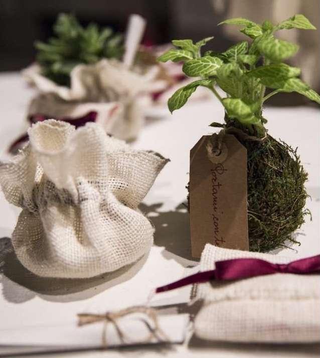 Matrimonio-in-Marsala-e-Verde-particolare bomboniera_bonsai_2